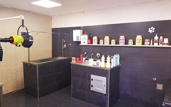 Vasca Da Toelettatura : Vasca da toelettatura: vasca per toelettatura tutti i produttori di